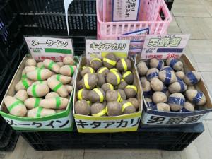 ジャガイモ種芋バラ202102